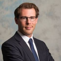 William Bouygues, Bouygues Immobilier.